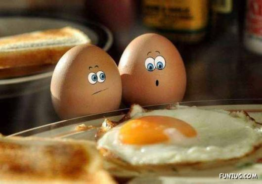 Comic Expressive Eggs Art