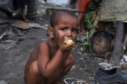 Please Don't Waste Food