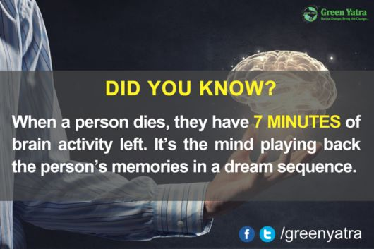 Amazing Facts Worth To Know