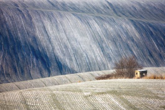 The Spectacular Beauty Of Moravian Fields