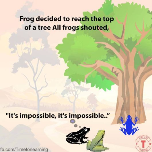 A Story Of A Frog