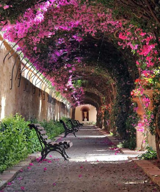 Stunning Flowery Streets In The World