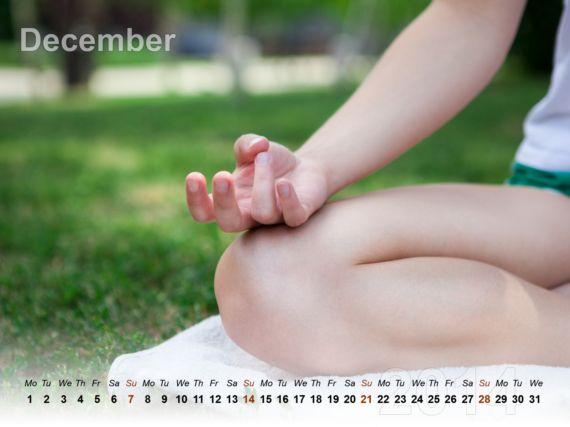 The Meditation Calendar 2014